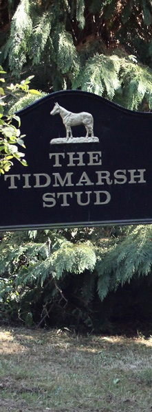 Reading Stables Tidmarsh Stud Sign